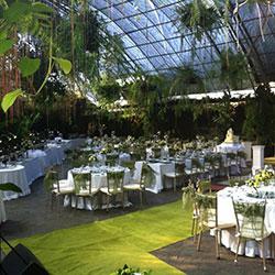 Fashion wedding dress fernwood gardens feature youtube for Secret garden pool novaliches